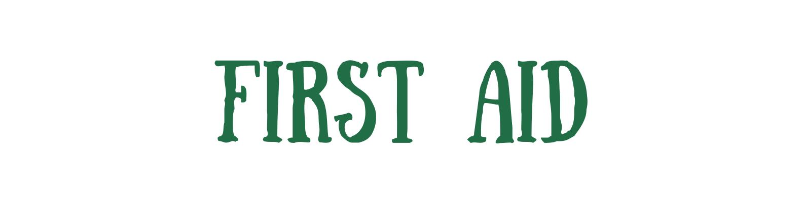 Green and Cream Brushstroke Assistant Professor LinkedIn Banner (18)