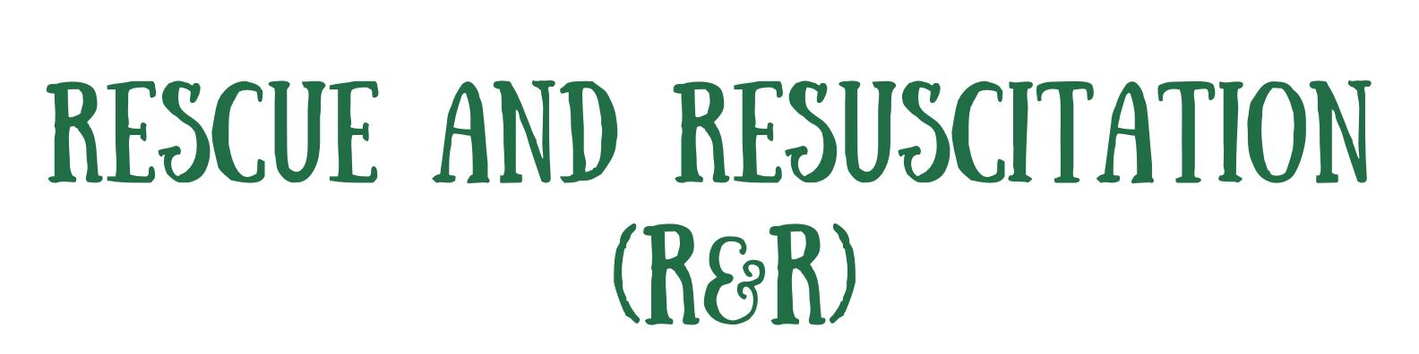 Green and Cream Brushstroke Assistant Professor LinkedIn Banner (26)