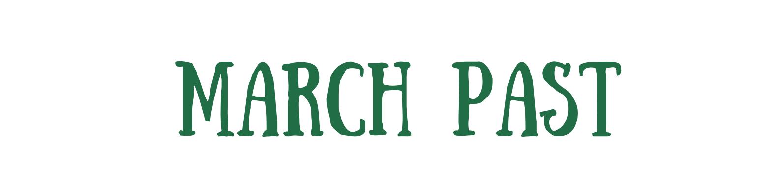Green and Cream Brushstroke Assistant Professor LinkedIn Banner (27)