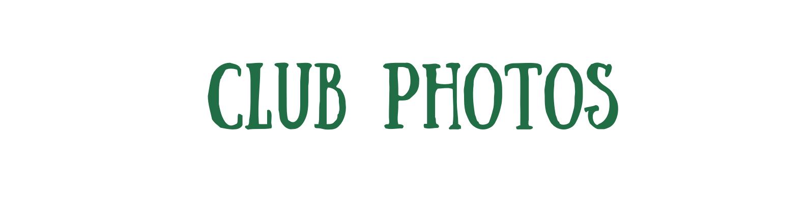 Green and Cream Brushstroke Assistant Professor LinkedIn Banner (43)